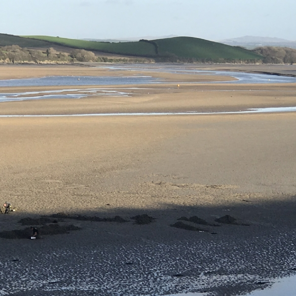 A very low tide on the camel trail january 2019