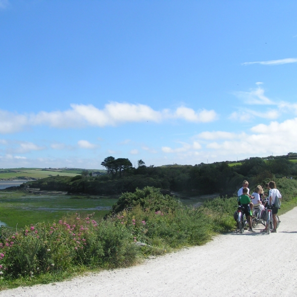 Camel trail cycle hire from Bridge Bike Hire Wadebridge to Padstow